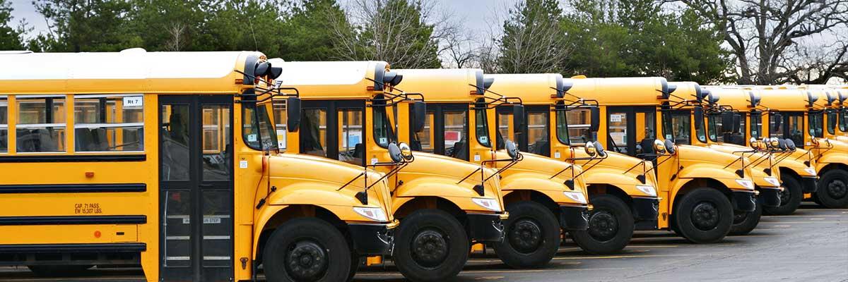 Line of school buses | School bus Driver Training Near Me